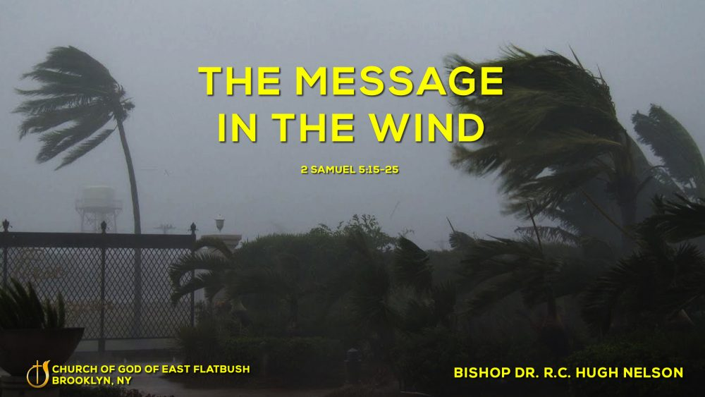 The Message in the Wind Image