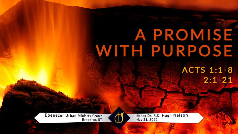 A Promise with a Purpose Image