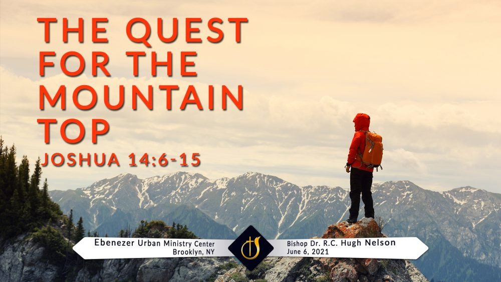 The Quest for the Mountain Top Image