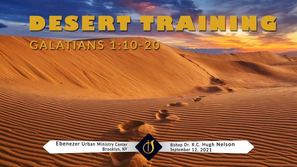 Desert Training Image